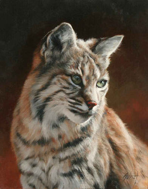 Bobcat Portrait-Painting-Edward Aldrich-Sorrel Sky Gallery
