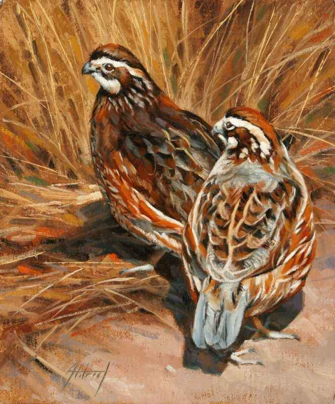 Edward Aldrich-Bobwhite Pair-Sorrel Sky Gallery-Painting