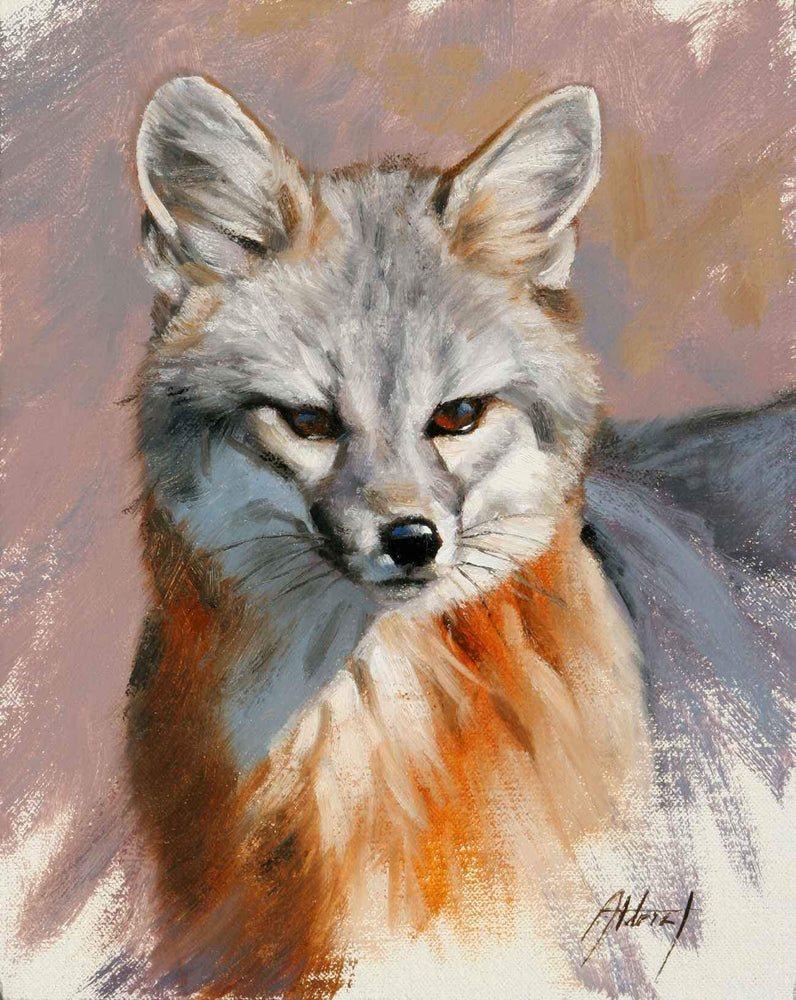 Grey Fox Portrait