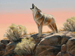 Edward Aldrich-Sorrel Sky Gallery-Painting-Howling Coyote