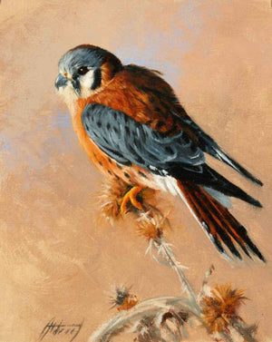Edward Aldrich-Kestrel-Sorrel Sky Gallery-Painting