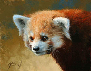 Edward Aldrich-Red Panda Portrait-Sorrel Sky Gallery-Painting