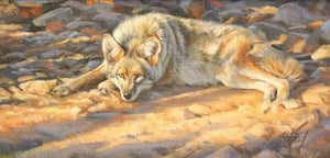 Edward Aldrich-Resting Coyote-Sorrel Sky Gallery-Painting
