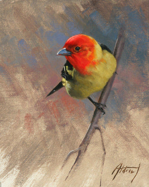 Western Tanager-Painting-Edward Aldrich-Sorrel Sky Gallery