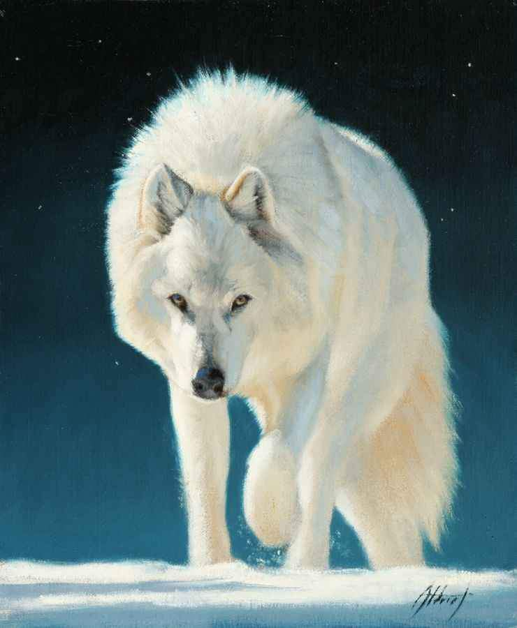 Edward Aldrich-White Wolf-Sorrel Sky Gallery-Painting