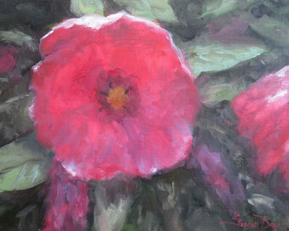 Painting of a Hibiscus flower by Stephen Day. Pink Flower. Sorrel Sky Gallery.