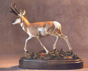 Jim Eppler-Big Sky Pronghorn Antelope-Sorrel Sky Gallery-Sculpture