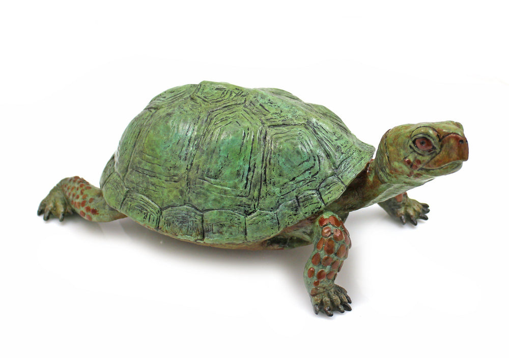 Box Turtle - Lifesize