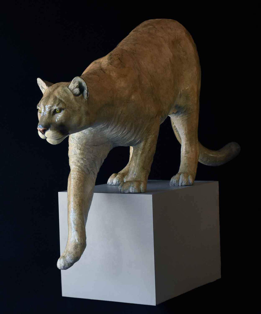 Cougar - Lifesize