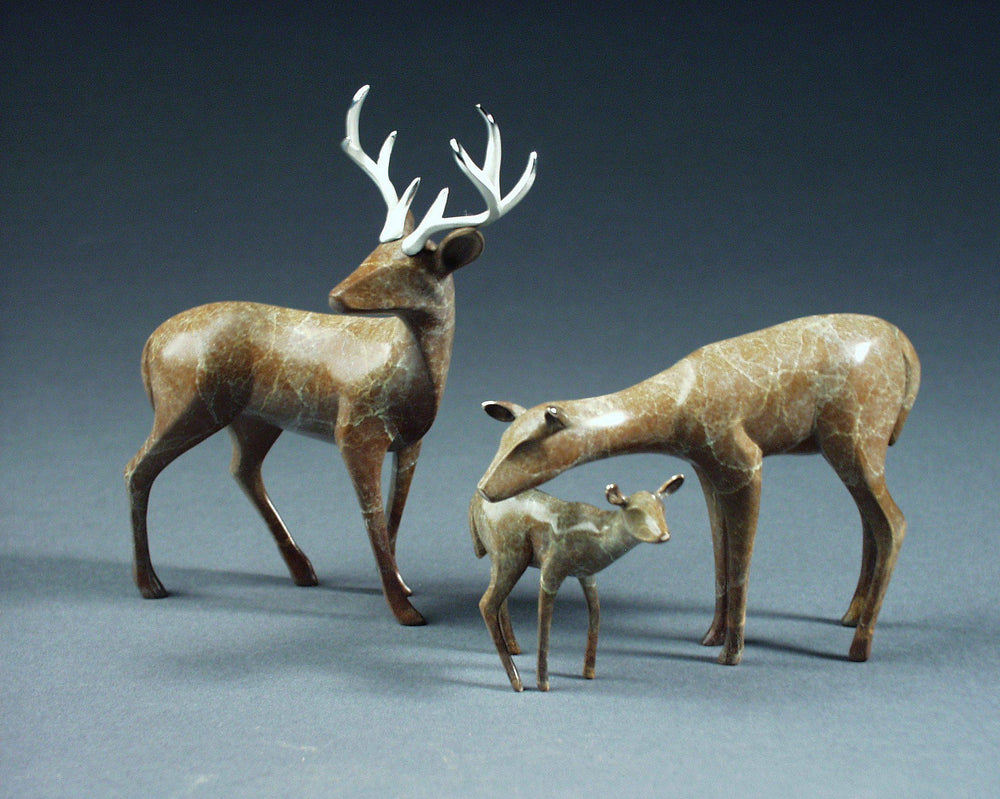 Buck, Doe & Fawn Family