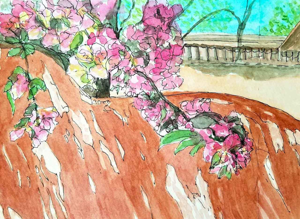 Nancy Klos-Sorrel Sky Gallery-Painting-Cherry Blossoms Over the Adobe Wall