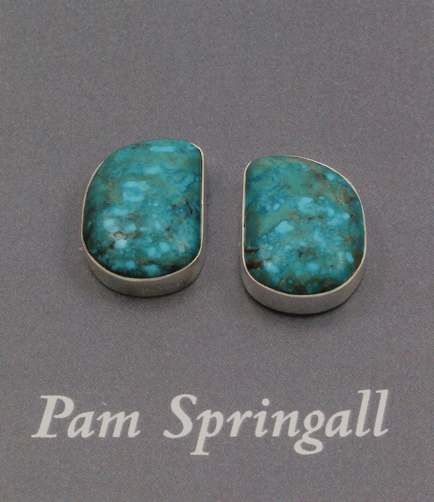 Blue Birds Eye Turquoise Clip On Earrings-Jewelry-Pam Springall-Sorrel Sky Gallery