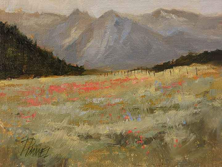 Peggy Immel-Acres Of Scarlet Gilia-Sorrel Sky Gallery-Painting
