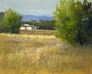 Peggy Immel-Asters and White Adobe-Sorrel Sky Gallery-Painting