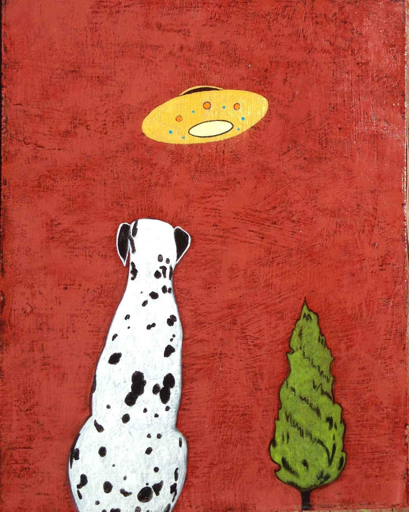Acrylic painting of a dalmatian with red background by Phyllis Stapler