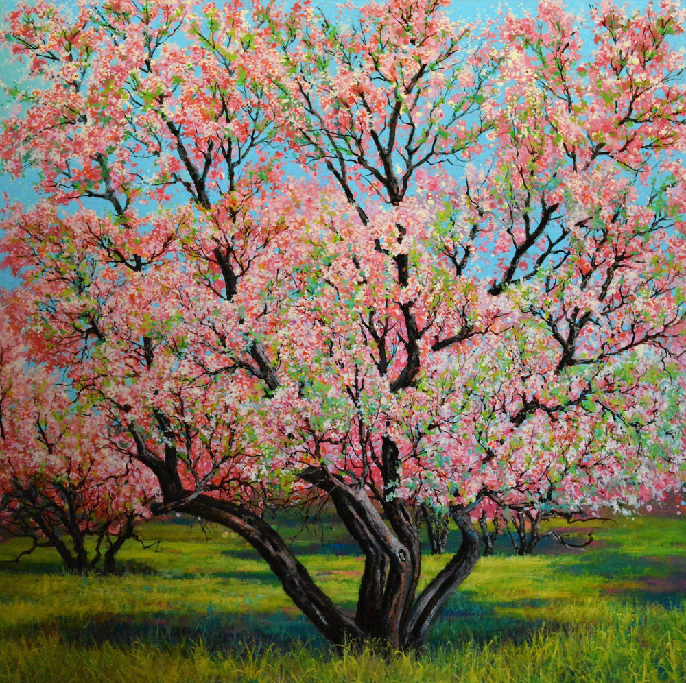 Apple Cherry Blossom-Painting-Roberto Ugalde-Sorrel Sky Gallery