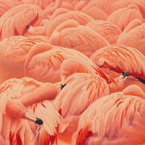 Flamboyance of Flamingos-Painting-Shawn Gould-Sorrel Sky Gallery