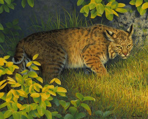 On The Prowl-Painting-Shawn Gould-Sorrel Sky Gallery