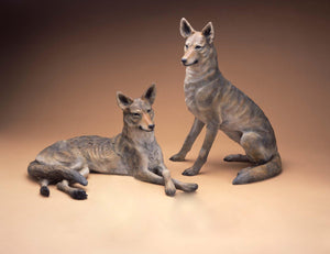 Coyote Couple