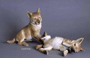 Star Liana York-Coyote Pup Sitting Down-Sorrel Sky Gallery-Sculpture