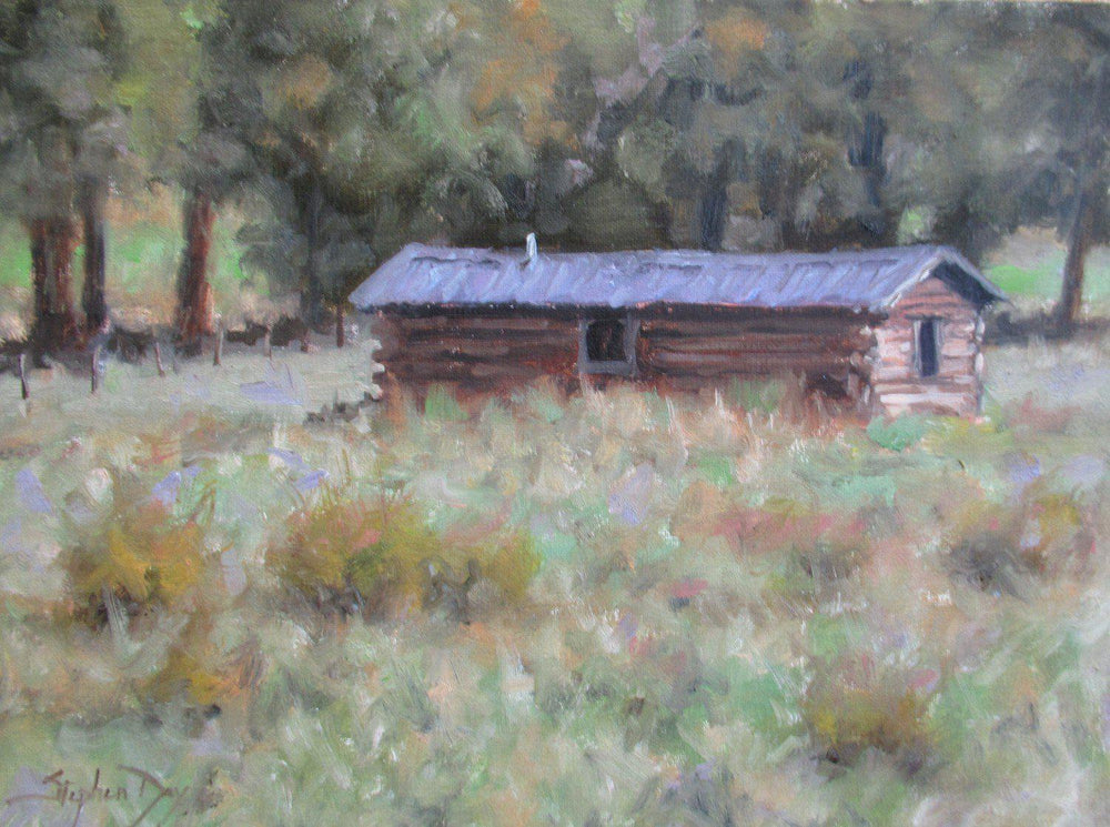 Homesteader's Cabin