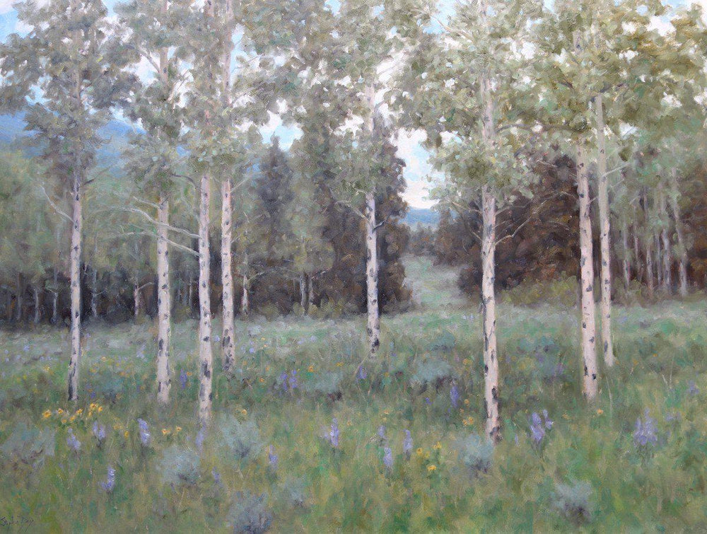 Summer Aspen Meadow