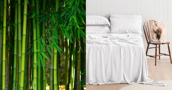 Pure Zone Certified Organic and OEKO-Tex Standard 100 Certified Bamboo Bed Sheet Sets