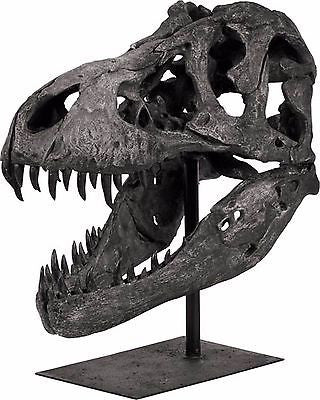 HUGE Resin Dinosaur Skull Sculpture 20 inches Tall X 11 inches Deep X 19 inches - FineHomeDecor101