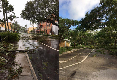 Downtown Naples post Hurricane Irma