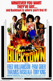 Bucktown - 1975 - Movie Poster