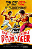 Fighting Dragon vs The Deadly Tiger - 1974 - Movie Poster