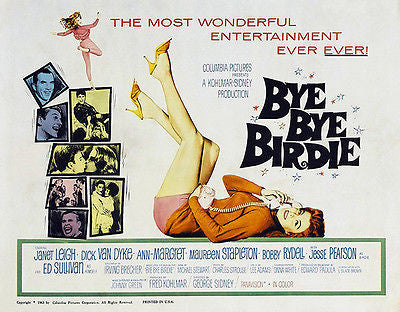Bye Bye Birdie - Ann-Margret - 1963 - Movie Poster