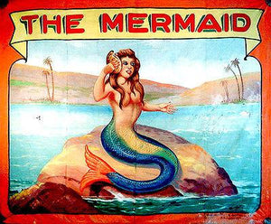 1960's Carnival Sideshow - The Mermaid - Magnet