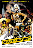Seduce and Destroy - 1973 - Movie Poster