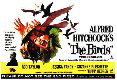 The Birds - 1963 - Movie Poster