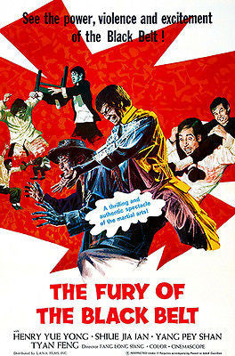 The Fury Of The Black Belt - 1973 - Movie Poster