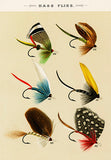 Bass Flies - 1892 - Fishing Illustration Poster