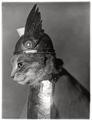Brunnhilde - Cat Viking Helmet And Shield - 1936 - Portrait Poster