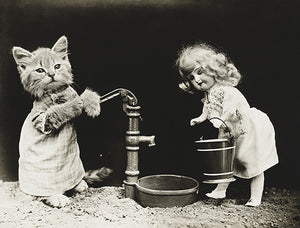 Cat Kitten Pumping Water For A Doll - 1915 - Photo Poster