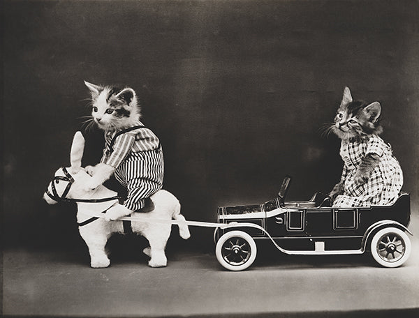 Cats Kittens - Mule Pulling A Broken Down Car - 1914 - Photo Poster