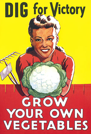 Dig For Victory - Grow Your Own Vegetables - World War II - Propaganda Magnet