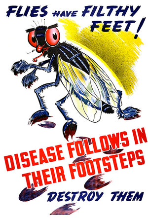 Flies Have Filthy Feet - 1940's - Health Poster
