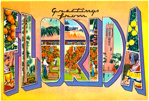 Greetings From Florida - 1930's - Vintage Postcard Poster