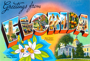 Greetings From Florida - Tallahassee - 1930's - Vintage Postcard Poster