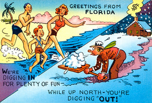 Greetings From Florida - We're Digging In For Fun - 1930's - Vintage Postcard Poster