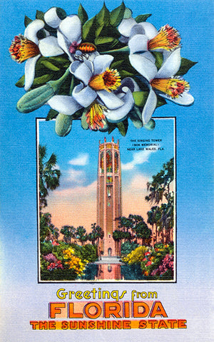 Greetings From Florida, The Sunshine State - 1930's - Vintage Postcard Poster