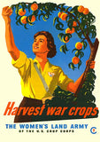 Harvest War Crops - Women's Land Army - 1945 - World War II - Propaganda Poster Mug