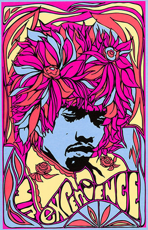 Jimi Hendrix - Mr Experience - 1967 - POP Art Poster
