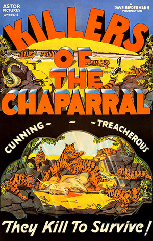 Killers Of The Chaparral - 1944 - Movie Poster
