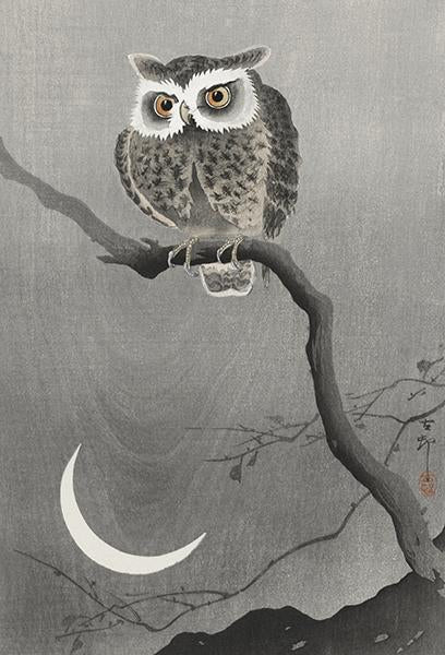 Long-Eared Owl On Bare Tree Branch - 1920's - Japanese Art - Bird Illustration Magnet